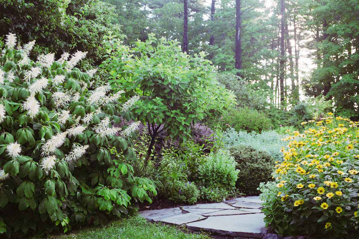 Perennial garden path near woodstock ny gayle burbank for Perennial garden design