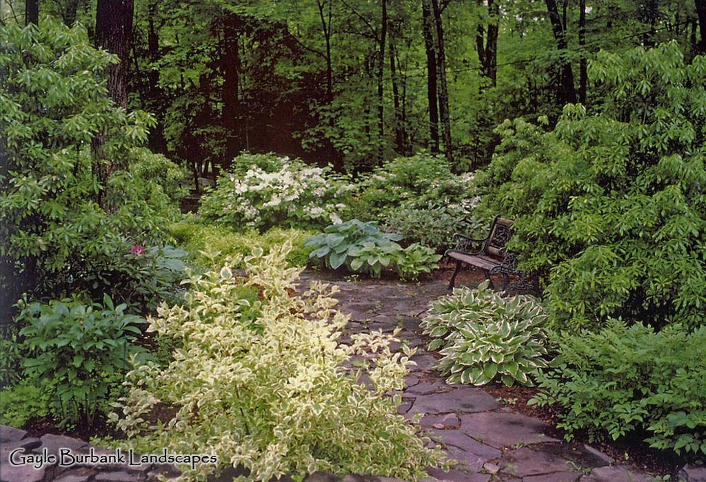 Woodland walk and garden, Ulster County NY