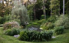 Large Coy Pond Landscape in Woodstock, NY