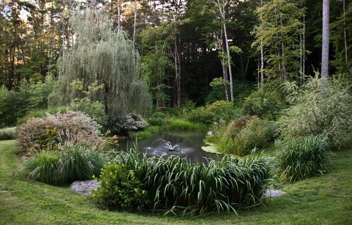 Large coy pond landscape in woodstock ny gayle burbank for Large pond design ideas