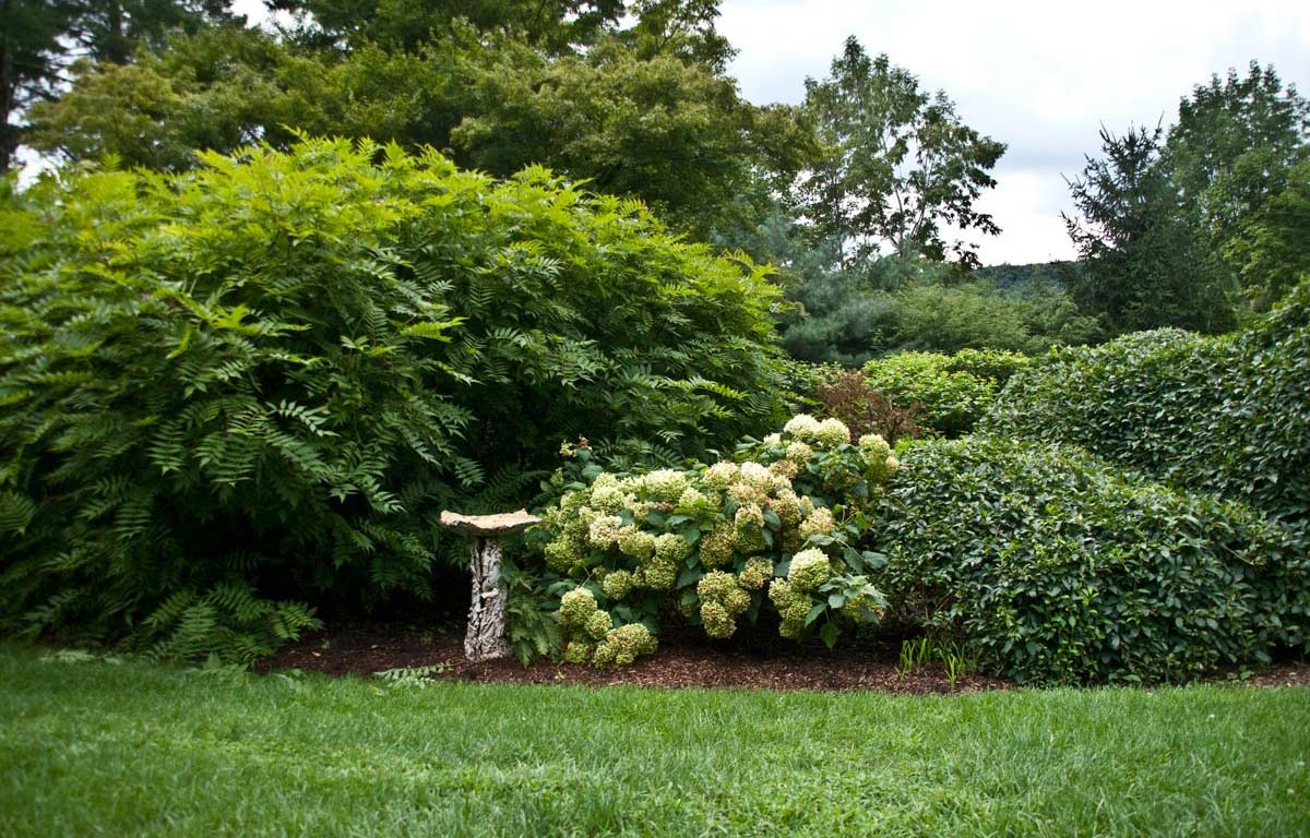 Sculpture in the Garden 7