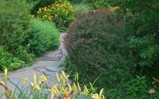 Westchester, NY Garden Meditation
